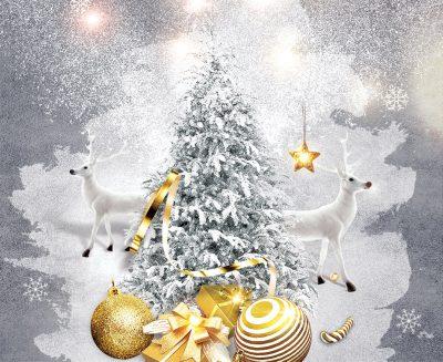 Christmas Specials 2019